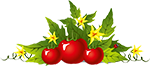 Логотип сайта Про помидоры