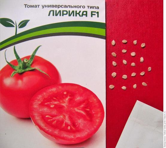 отзывы садоводов о томате лирика