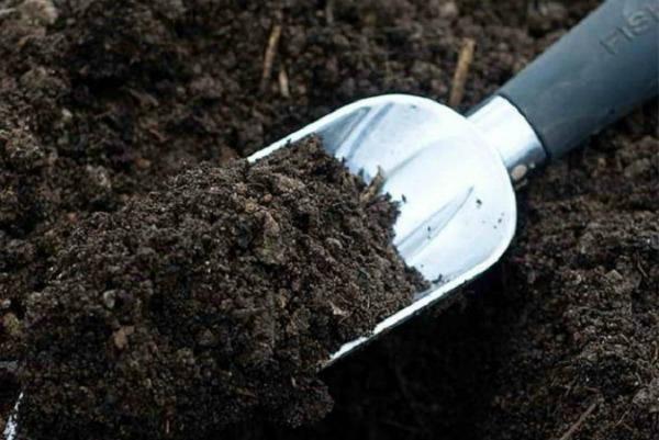Приготовить почву для посадки семян помидоров в горшки