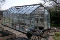 Подготовка теплицы из поликарбоната весной к посадке томатов с видео