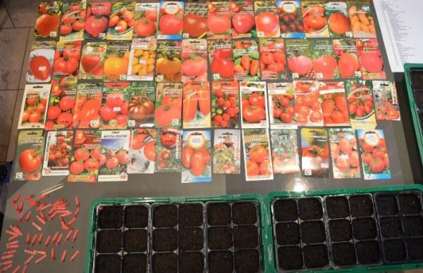 Критерии для выбора семян