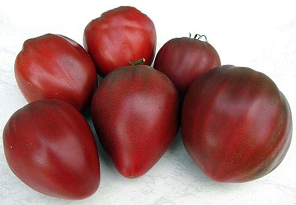 Сорт помидоров Черное Бычье сердце
