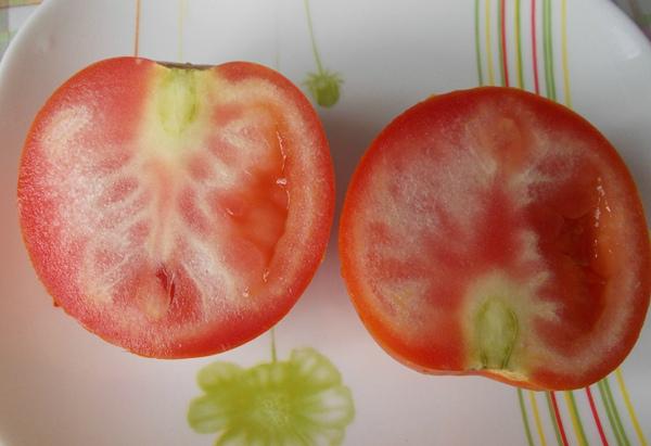 Отчего помидоры внутри белые и жесткие