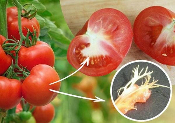 Почему помидоры внутри белые