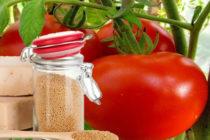 Как правильно подкормить томаты дрожжами в теплице, в открытом грунте Видео
